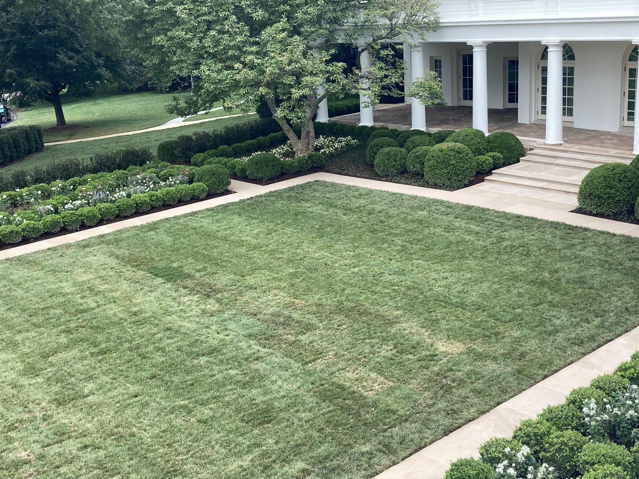 Petition calls for Jill Biden to undo Trump-era changes to White House Rose Garden